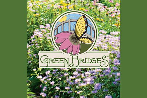Science Cafe Green Bridges