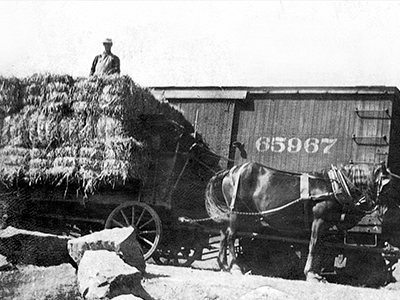 Shipping Hay by Train